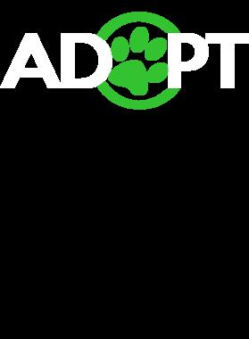 https://d1w8c6s6gmwlek.cloudfront.net/apileofshirts.com/overlays/210/292/21029290.png img