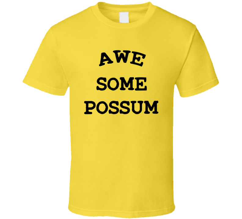 Everything Is Awesome Possum Lego Movie Oscar Lonely Island T Shirt