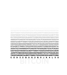 https://d1w8c6s6gmwlek.cloudfront.net/bitcoinpride.com/overlays/172/419/1724191.png img