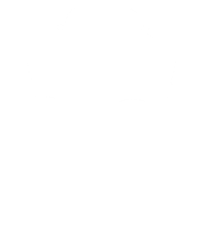 https://d1w8c6s6gmwlek.cloudfront.net/cargeektees.com/overlays/113/171/1131715.png img