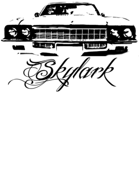 https://d1w8c6s6gmwlek.cloudfront.net/cargeektees.com/overlays/113/595/11359512.png img