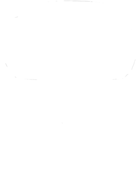 https://d1w8c6s6gmwlek.cloudfront.net/cargeektees.com/overlays/192/084/19208497.png img