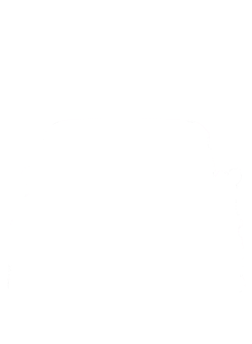 https://d1w8c6s6gmwlek.cloudfront.net/cargeektees.com/overlays/218/522/21852203.png img