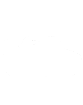 https://d1w8c6s6gmwlek.cloudfront.net/cargeektees.com/overlays/245/364/2453647.png img