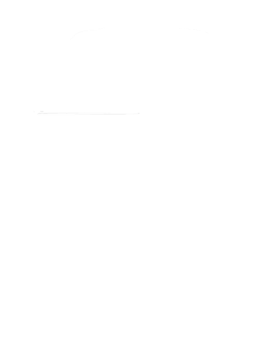 https://d1w8c6s6gmwlek.cloudfront.net/cargeektees.com/overlays/349/029/3490290.png img