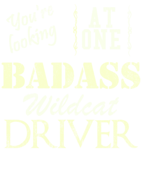 https://d1w8c6s6gmwlek.cloudfront.net/cargeektees.com/overlays/527/284/5272844.png img
