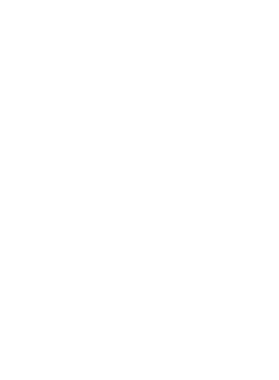 https://d1w8c6s6gmwlek.cloudfront.net/cargeektees.com/overlays/572/482/5724825.png img