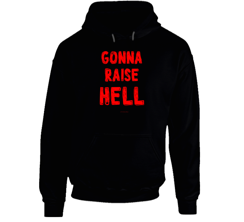 Gonna Raise Hell Party On Wild Funny Gift Girls Guys Hoodie