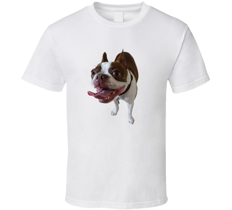 Boston Terrior Shirt