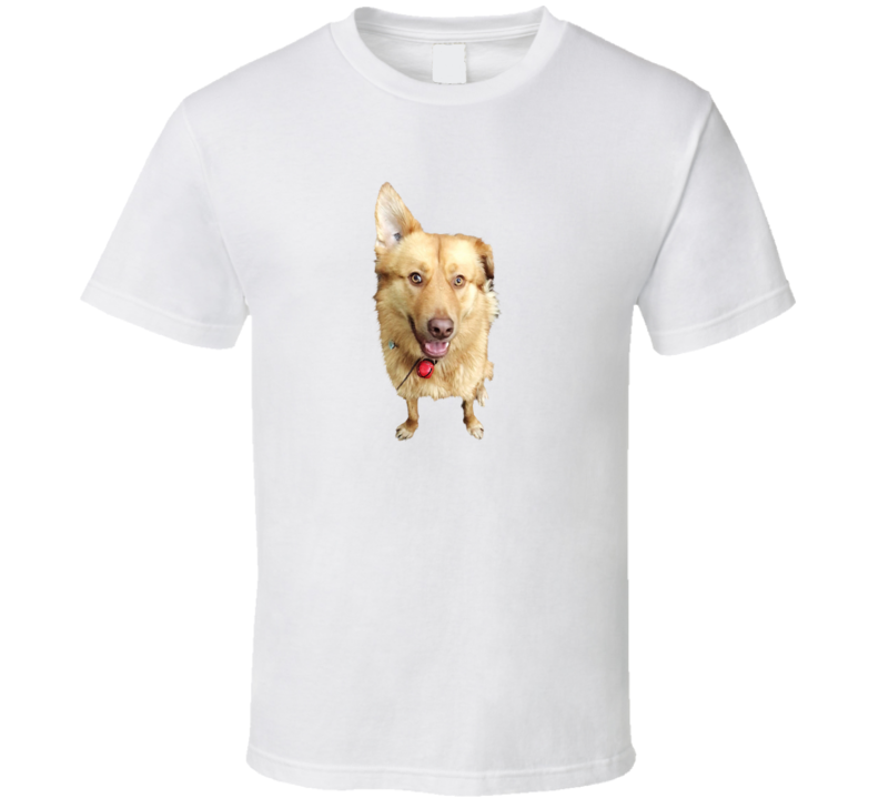 Husky Golden Dog Shirt