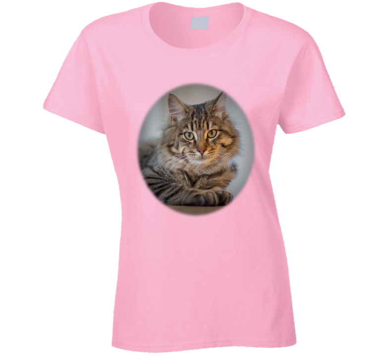 Tabby Cat Oval T Shirt
