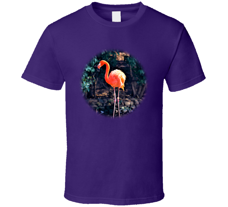 Flamingo V.1 T Shirt