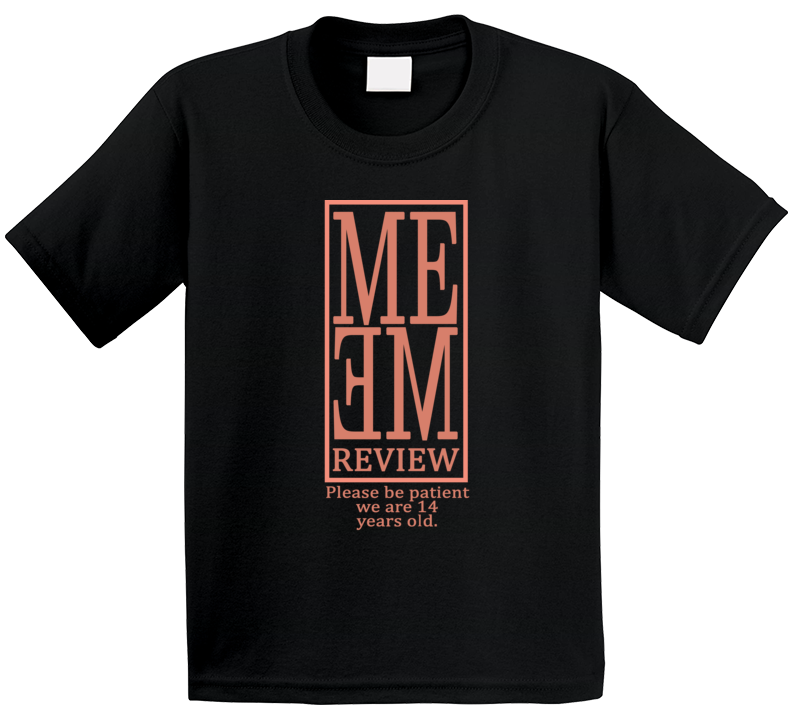 Please Be Patient Forteen 14 Years Old Pewdiepie Meme Review T Shirt