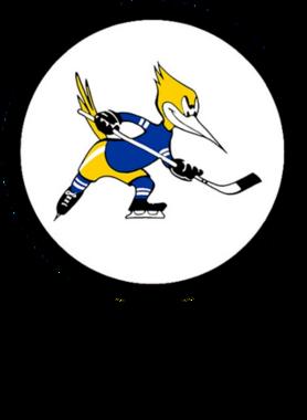 https://d1w8c6s6gmwlek.cloudfront.net/goodoldhockeytshirts.com/overlays/305/630/30563075.png img