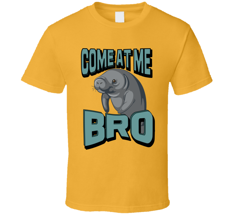 Come At Me Bro! T Shirt