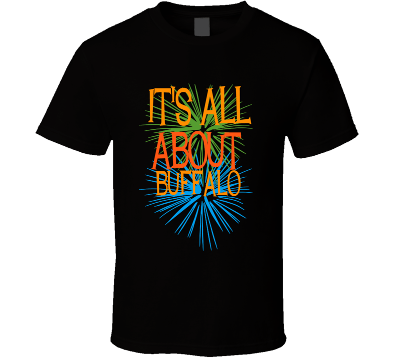 Buffalo Erie County New York State Its All About T Shirt