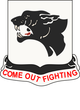https://d1w8c6s6gmwlek.cloudfront.net/militaryinsigniaproducts.com/overlays/363/052/36305265.png img