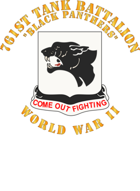 https://d1w8c6s6gmwlek.cloudfront.net/militaryinsigniaproducts.com/overlays/363/072/36307296.png img