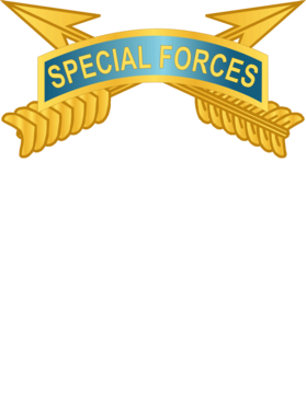https://d1w8c6s6gmwlek.cloudfront.net/militaryinsigniaproducts.com/overlays/389/665/38966517.png img