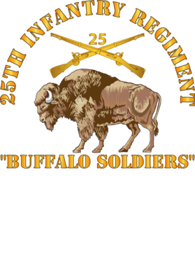 https://d1w8c6s6gmwlek.cloudfront.net/militaryinsigniaproducts.com/overlays/389/674/38967493.png img