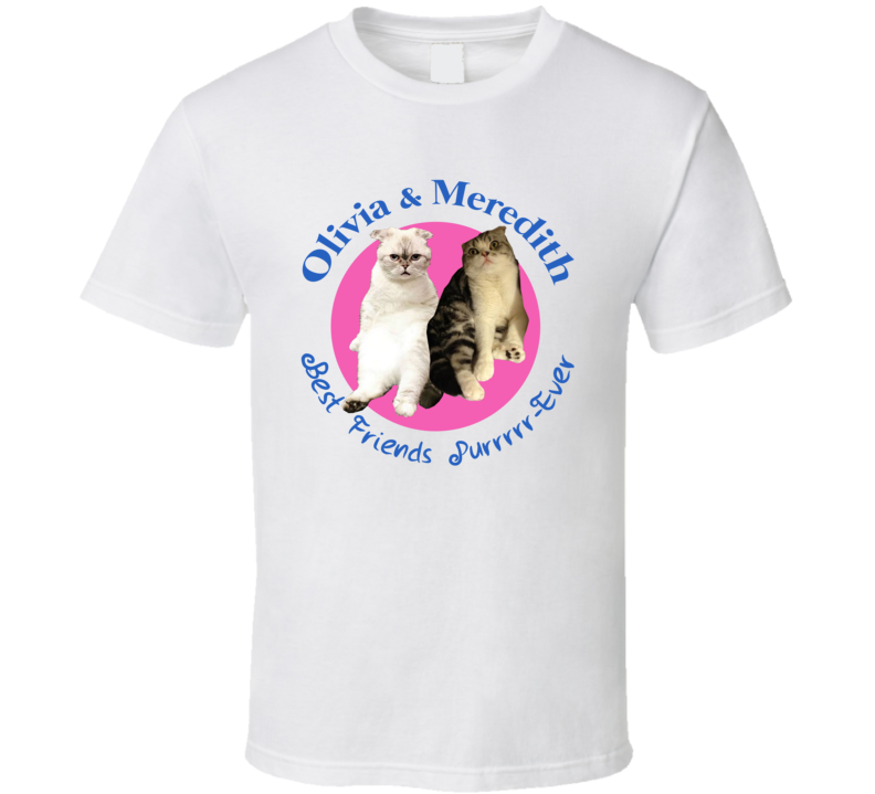 Olivia And Meredith Best Friends Purrrrr Ever Deadpool Ryan Reynolds Taylor Swift Cats T Shirt