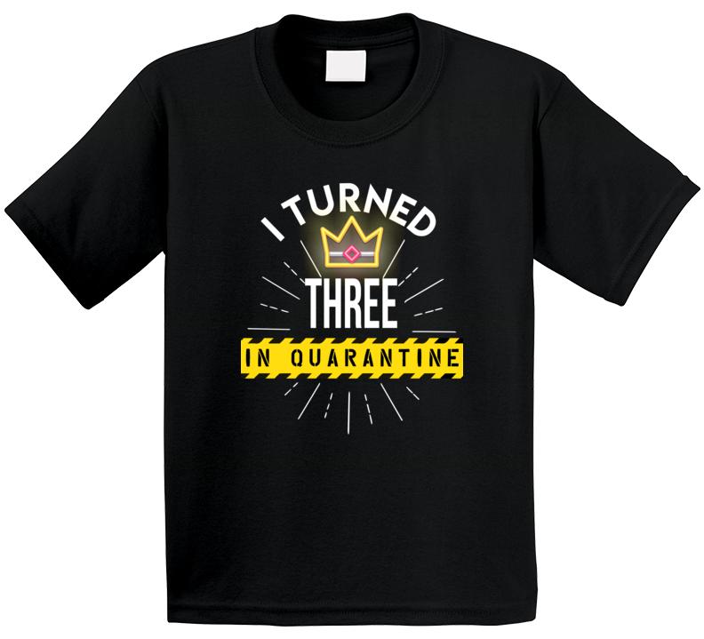 I Turned Three In Quarantine Birthday  T Shirt