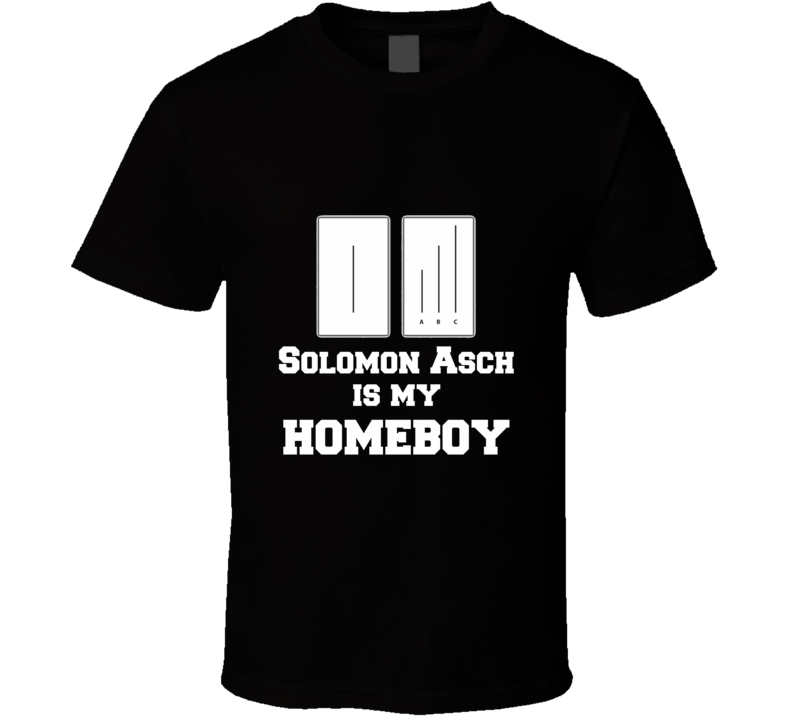 Asch Homeboy Funny unique tshirt Great gift for stats geek student prof researcher