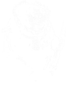 https://d1w8c6s6gmwlek.cloudfront.net/thetshirtprince.com/overlays/28424.png img