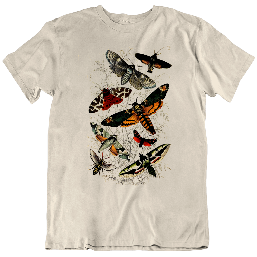 Antique Natural History Reproduction Print Of Moths 18th Century Picture Science T Shirt