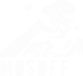 https://d1w8c6s6gmwlek.cloudfront.net/worldstarhiphoptshirts.com/overlays/29800.png img